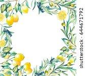 lemon  olive tree branches card ... | Shutterstock . vector #644671792
