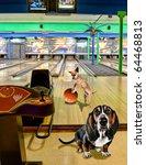 funny dog card - stock photo