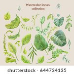 watercolor leaves collection.... | Shutterstock . vector #644734135