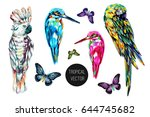parrots  butterflies flying... | Shutterstock .eps vector #644745682