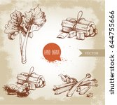 hand drawn sketch style rhubarb ...   Shutterstock .eps vector #644755666