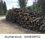 wood | Shutterstock . vector #644838952