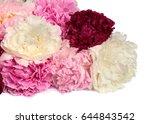 different color peonies ... | Shutterstock . vector #644843542