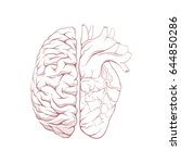 versus human brain right and... | Shutterstock .eps vector #644850286