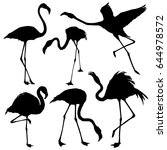 flamingo silhouette set. vector ... | Shutterstock .eps vector #644978572
