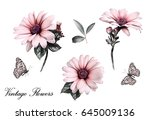 Stock photo set elements of flowers collection garden flowers branches floral illustration isolated on 645009136