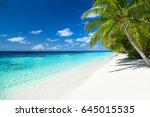 tropical paradise beach with... | Shutterstock . vector #645015535