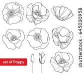 vector set with outline poppy... | Shutterstock .eps vector #645030958