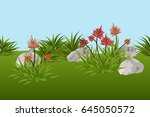 summer landscape background... | Shutterstock .eps vector #645050572