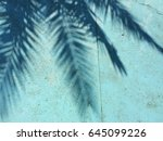 palm tree shadow on a blue... | Shutterstock . vector #645099226