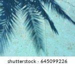 Palm Tree Shadow On A Blue...