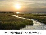 Ocean Salt Marsh With Sea Gras...