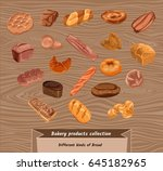 colorful sketch fresh bread set ... | Shutterstock .eps vector #645182965