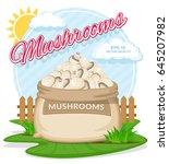 vector illustration of eco... | Shutterstock .eps vector #645207982