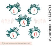 set with calligraphic figures... | Shutterstock .eps vector #645234766