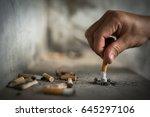 cigarette butt | Shutterstock . vector #645297106