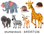 many types of wild animals... | Shutterstock .eps vector #645357136