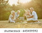 group of seniors in the park in ... | Shutterstock . vector #645459592