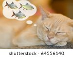 Stock photo dreaming cat 64556140