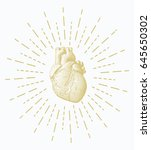 golden engraving human heart... | Shutterstock .eps vector #645650302