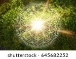 beautiful flower of life in... | Shutterstock . vector #645682252