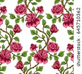 seamless floral pattern.... | Shutterstock .eps vector #645710362