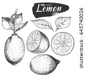 sketch ink vintage lemon set... | Shutterstock .eps vector #645740026