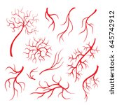 human eye veins or vessel  red... | Shutterstock .eps vector #645742912