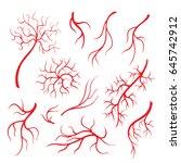 Human Eye Veins Or Vessel  Red...