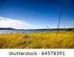 Landscape nature north of Russia. Nature Circumpolar summer - stock photo