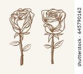 pair of roses. hand drawn roses. | Shutterstock .eps vector #645790162
