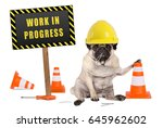 pug dog with constructor safety ...   Shutterstock . vector #645962602