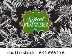 background with ink hand drawn... | Shutterstock .eps vector #645996196