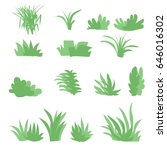 flat grasses set vector.bush... | Shutterstock .eps vector #646016302