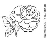 isolated rose. outline drawing. ... | Shutterstock .eps vector #646018618