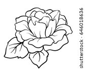 isolated rose. outline drawing.