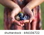 a young woman carefully holds a ... | Shutterstock . vector #646106722