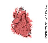 hand drawn human heart. anatomy ... | Shutterstock .eps vector #646147462