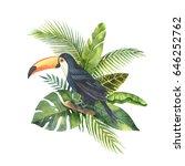 watercolor bouquet of tropical... | Shutterstock . vector #646252762