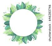 vector illustration. green... | Shutterstock .eps vector #646283746