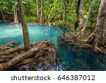 tha pom klong song nam... | Shutterstock . vector #646387012