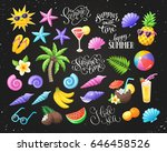 tropical summer objects... | Shutterstock .eps vector #646458526