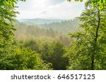 beautiful view at a forest... | Shutterstock . vector #646517125