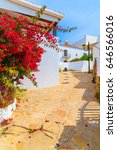Small photo of Street with bougainvillea flowers and white typical houses in Puig de Missa area of Santa Eularia town, Ibiza island, Spain
