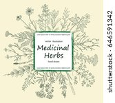 card of a medicinal herbs and... | Shutterstock .eps vector #646591342