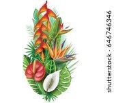 arrangement from tropical... | Shutterstock .eps vector #646746346
