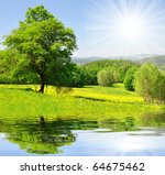 Spring Landscape In The...