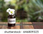 glass bottle flower on wooden | Shutterstock . vector #646809325