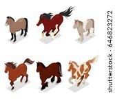 different breeds horses set... | Shutterstock .eps vector #646823272