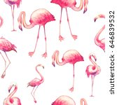watercolor flamingo seamless... | Shutterstock . vector #646839532